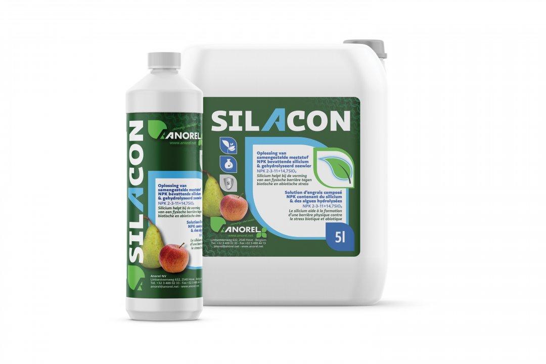 Silacon